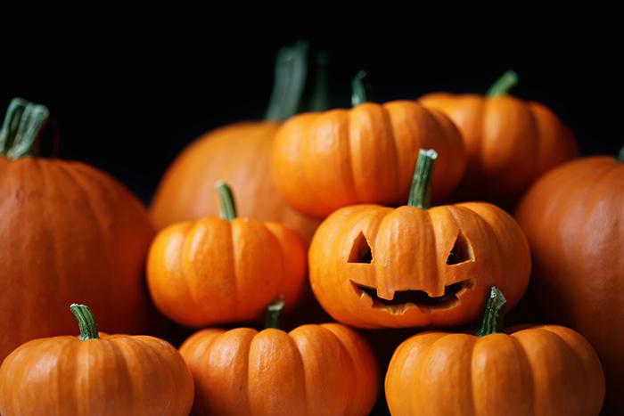 Orange pumpkins during Halloween