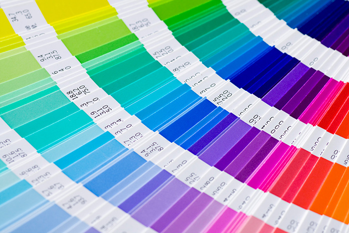 Colorful pantone to explain the meanings of the colors