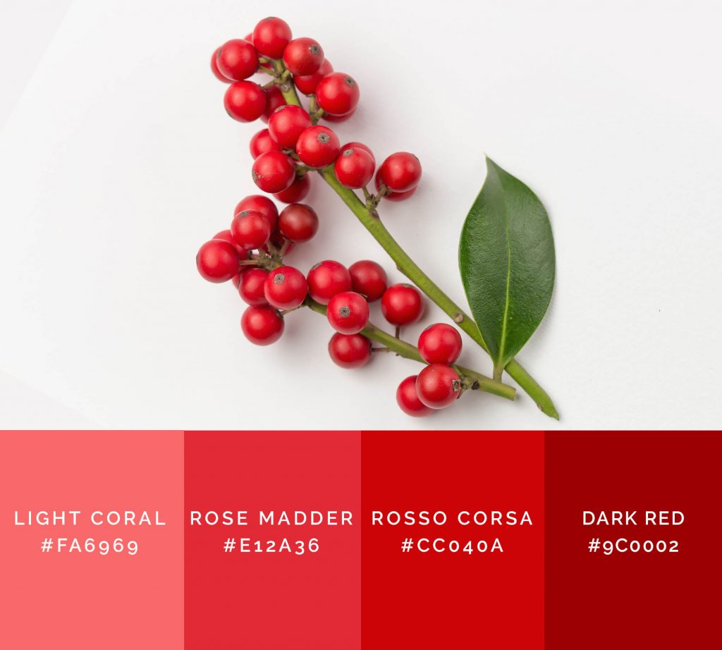 Christmas Berries palette has shades of red color