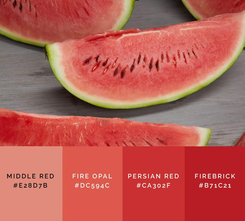 Watermelon palette has shades of red color