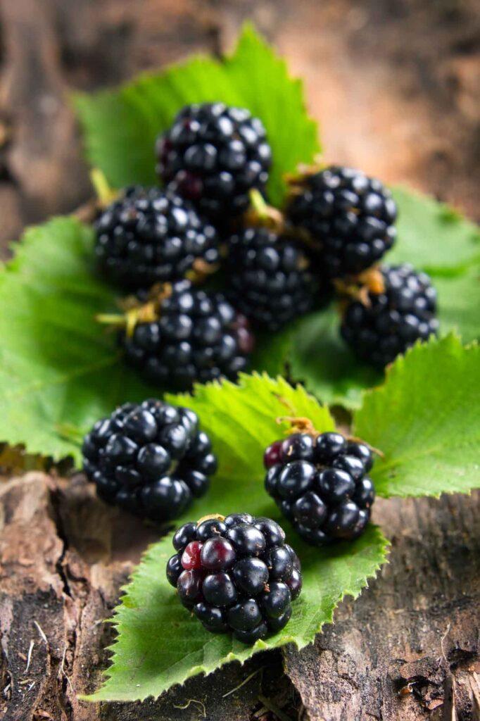 Blue blackberries