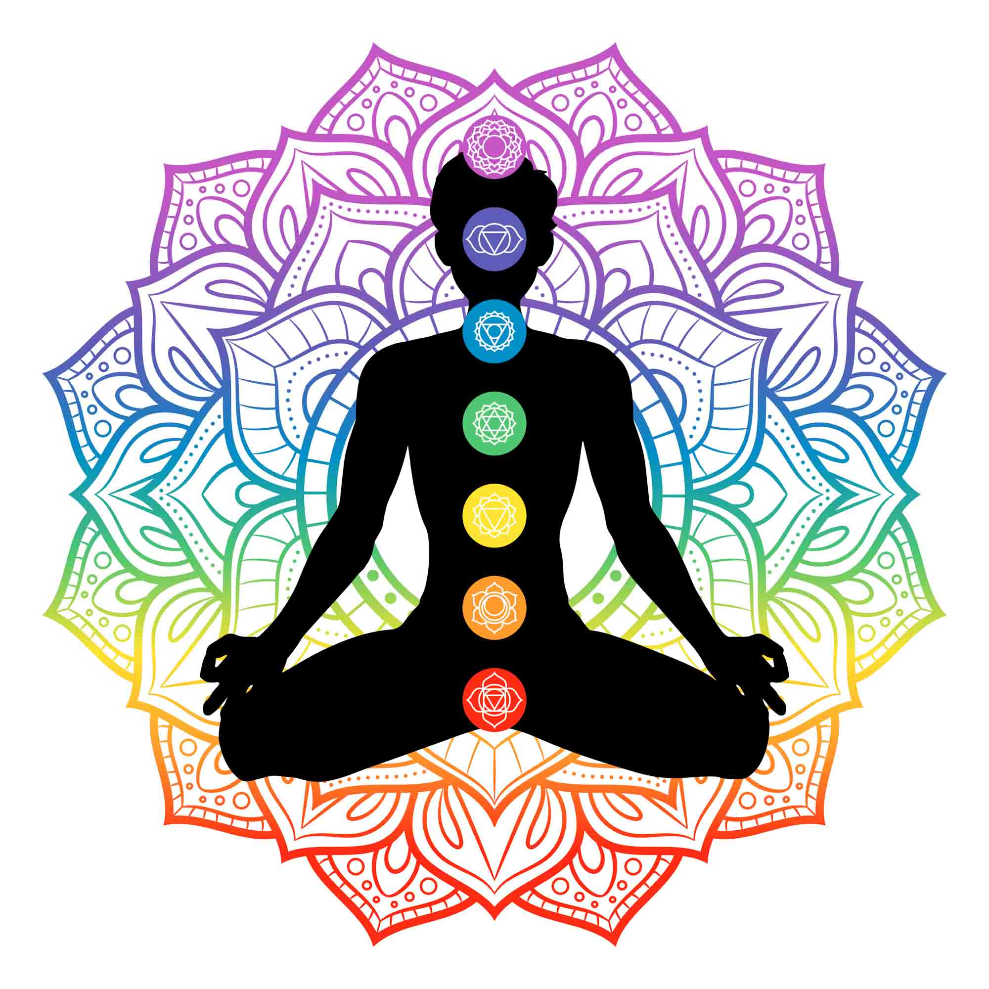 Seven chakra colors and positions