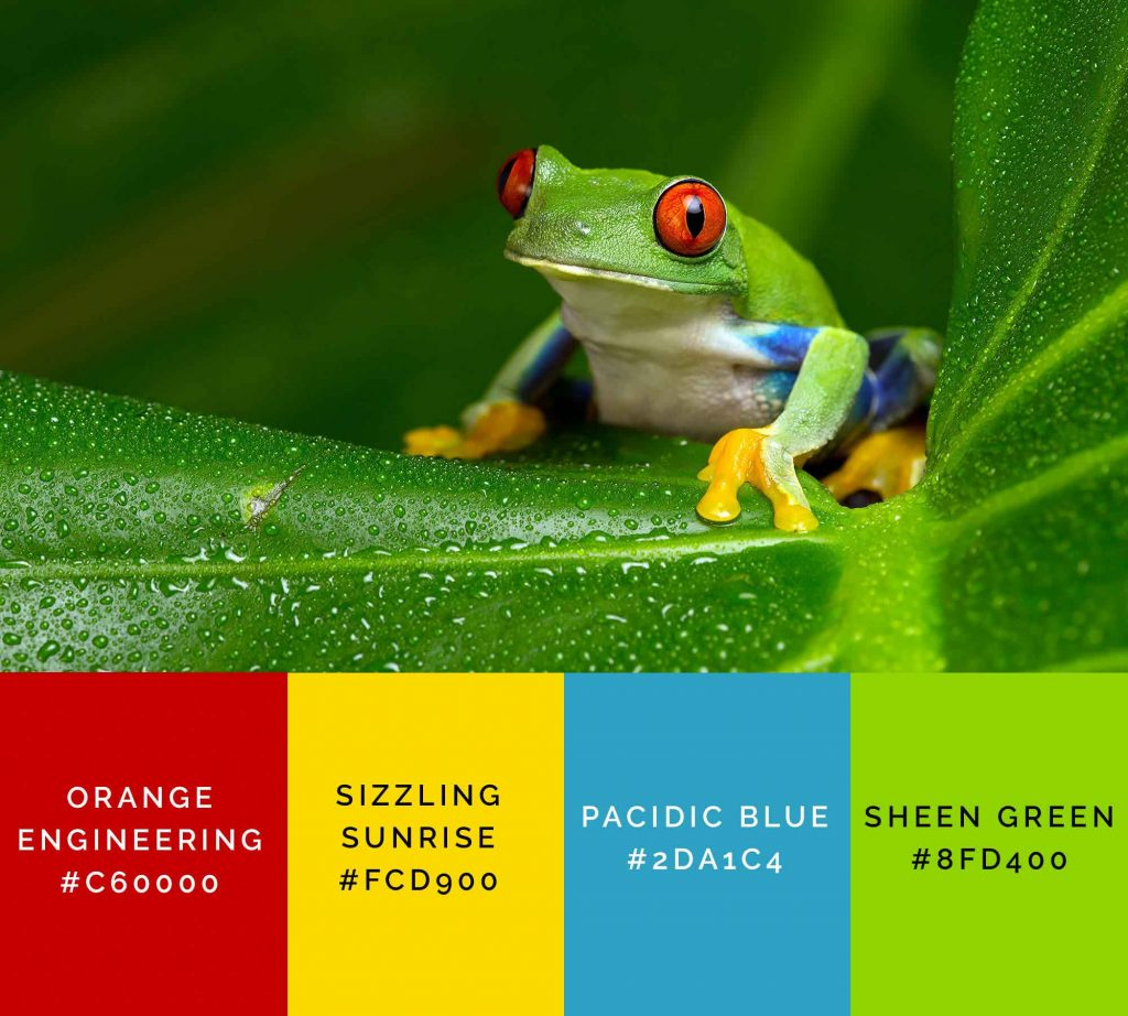 Frog palette has beautiful shades of green color