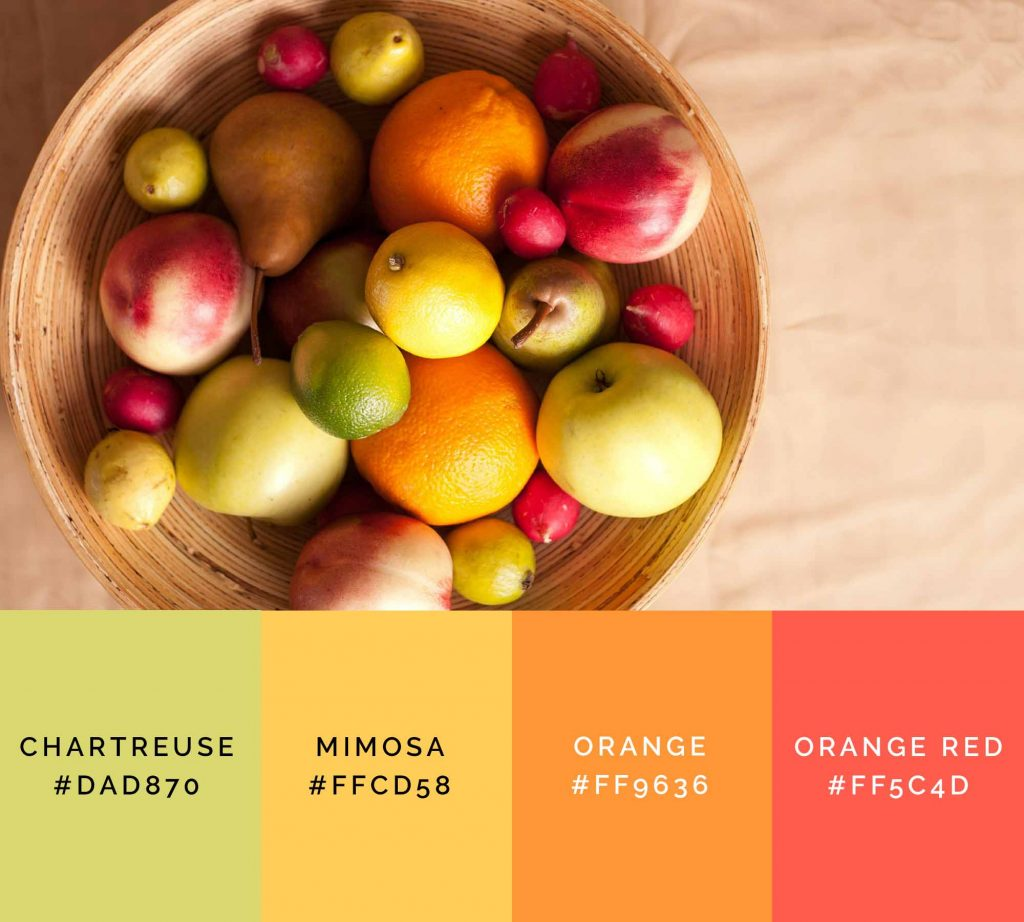 Fruits palette has beautiful shades of orange color