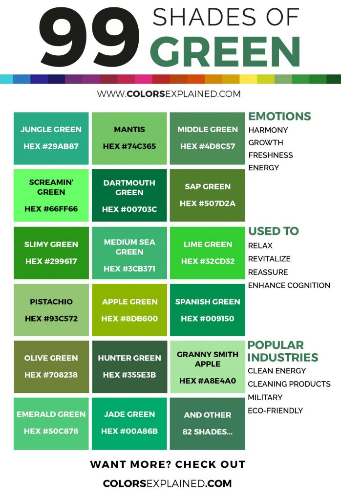 Shades of green color infographic