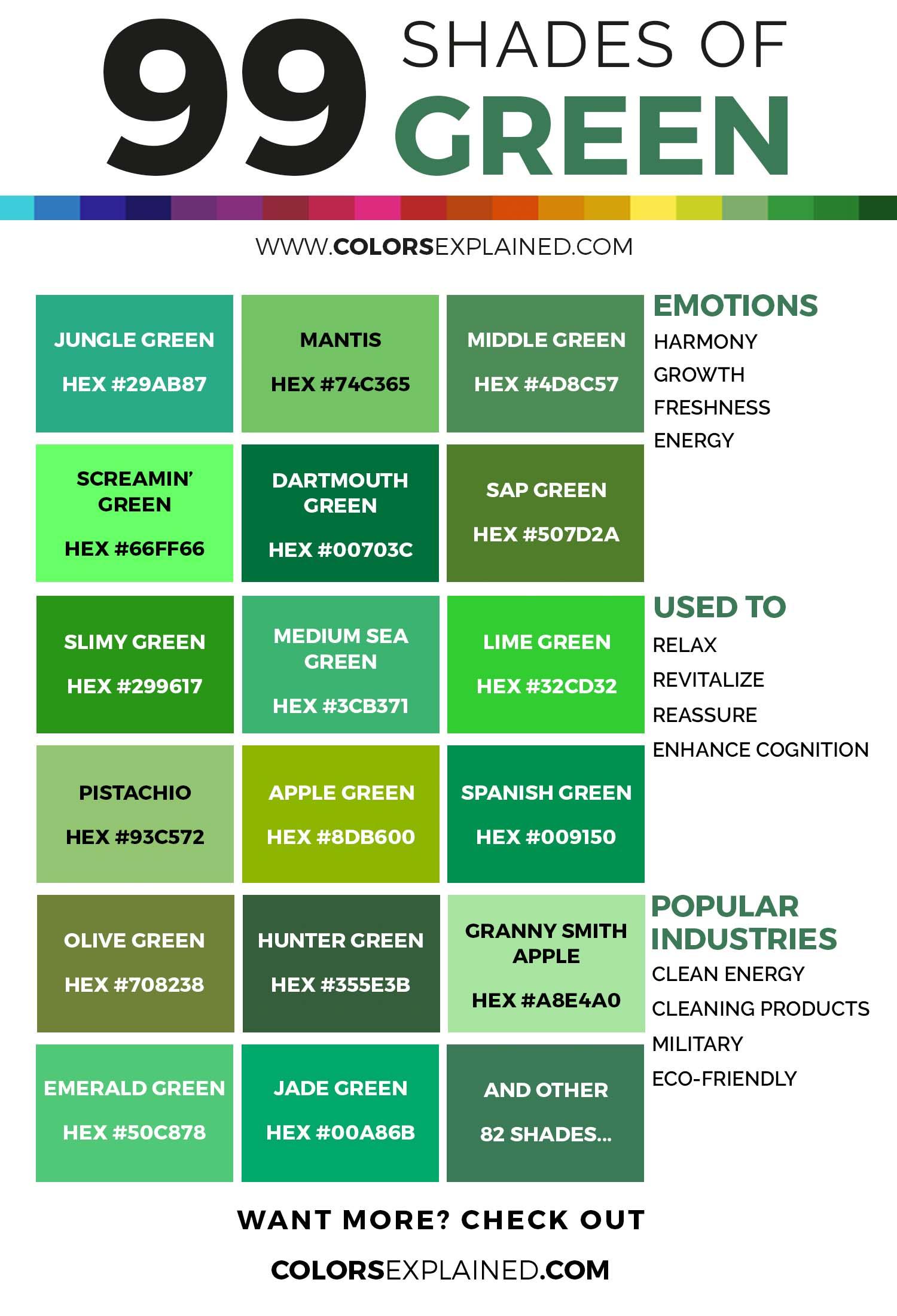 Инфографика Бруны Вентуринелли в оттенках зеленого