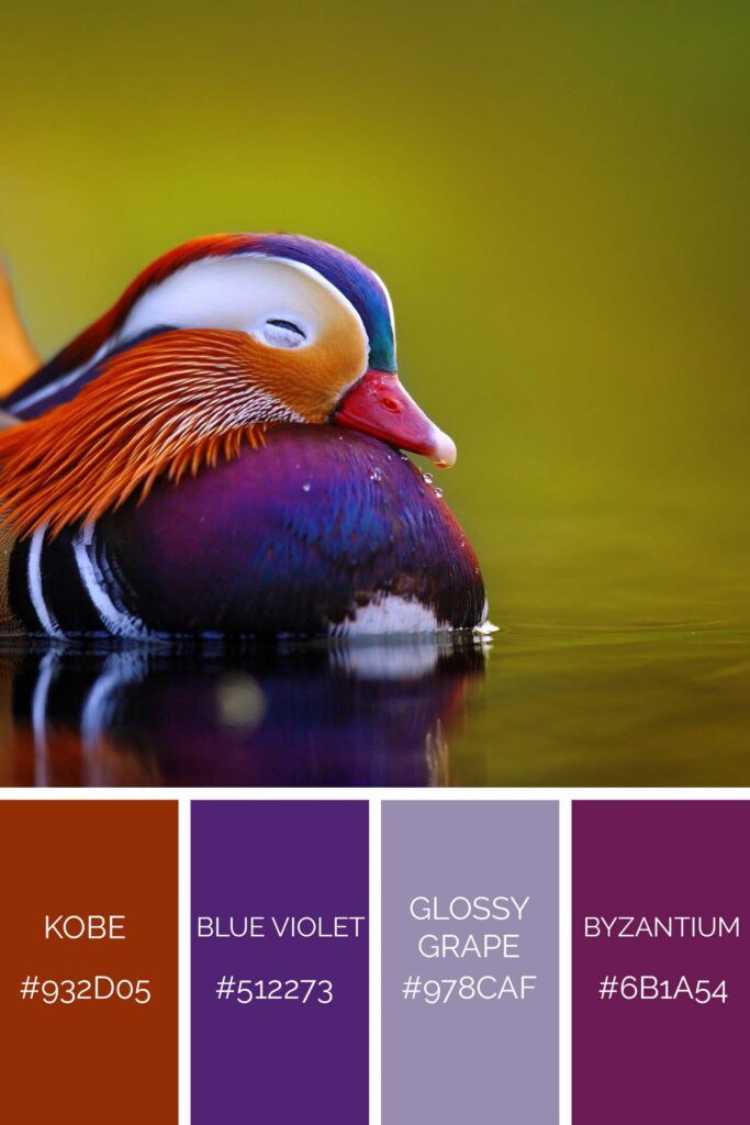 Duck palette has beautiful shades of purple color