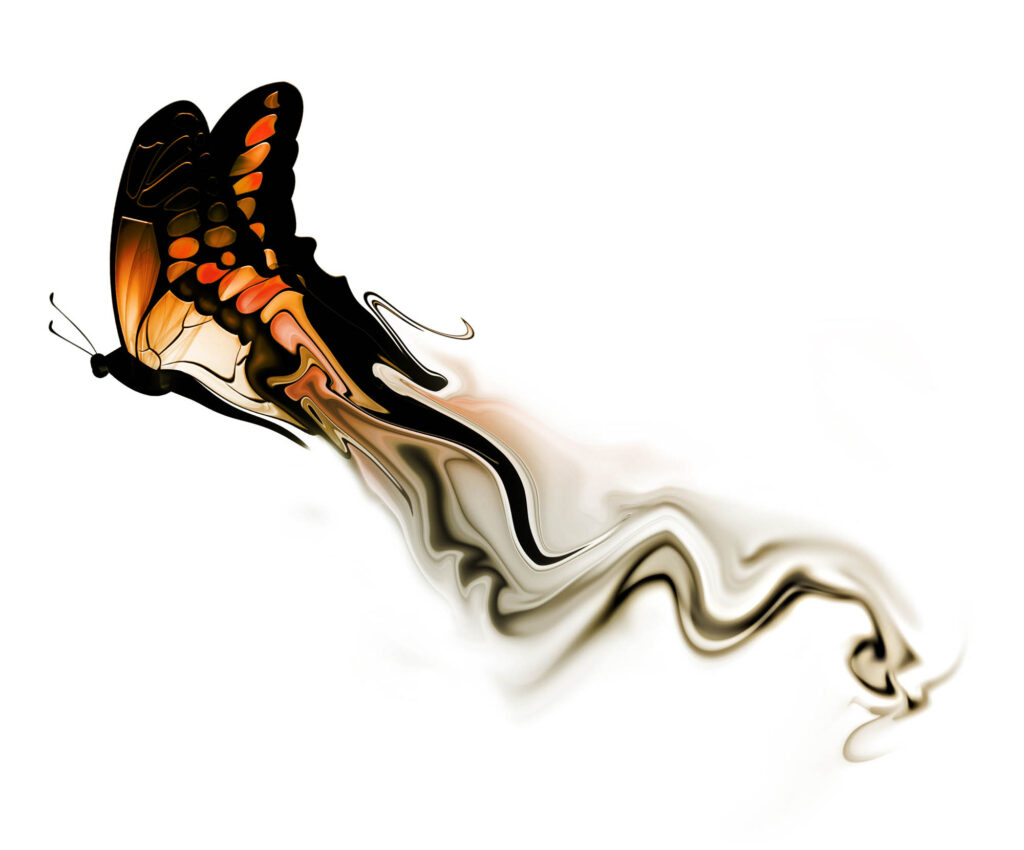Butterfly color with smoke