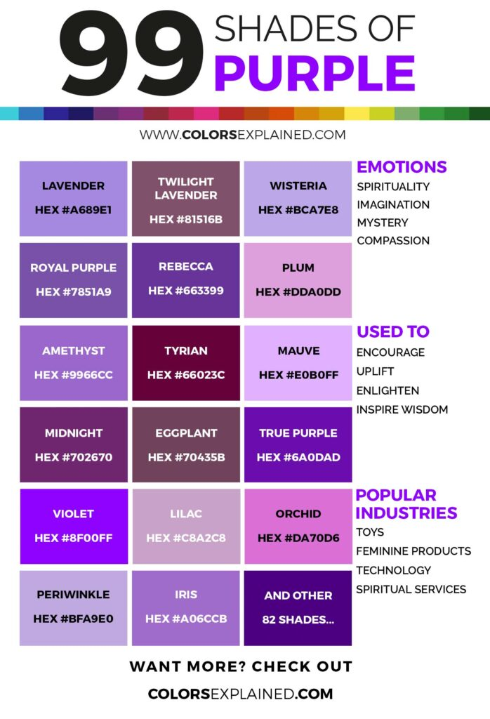 Shades of purple color infographic