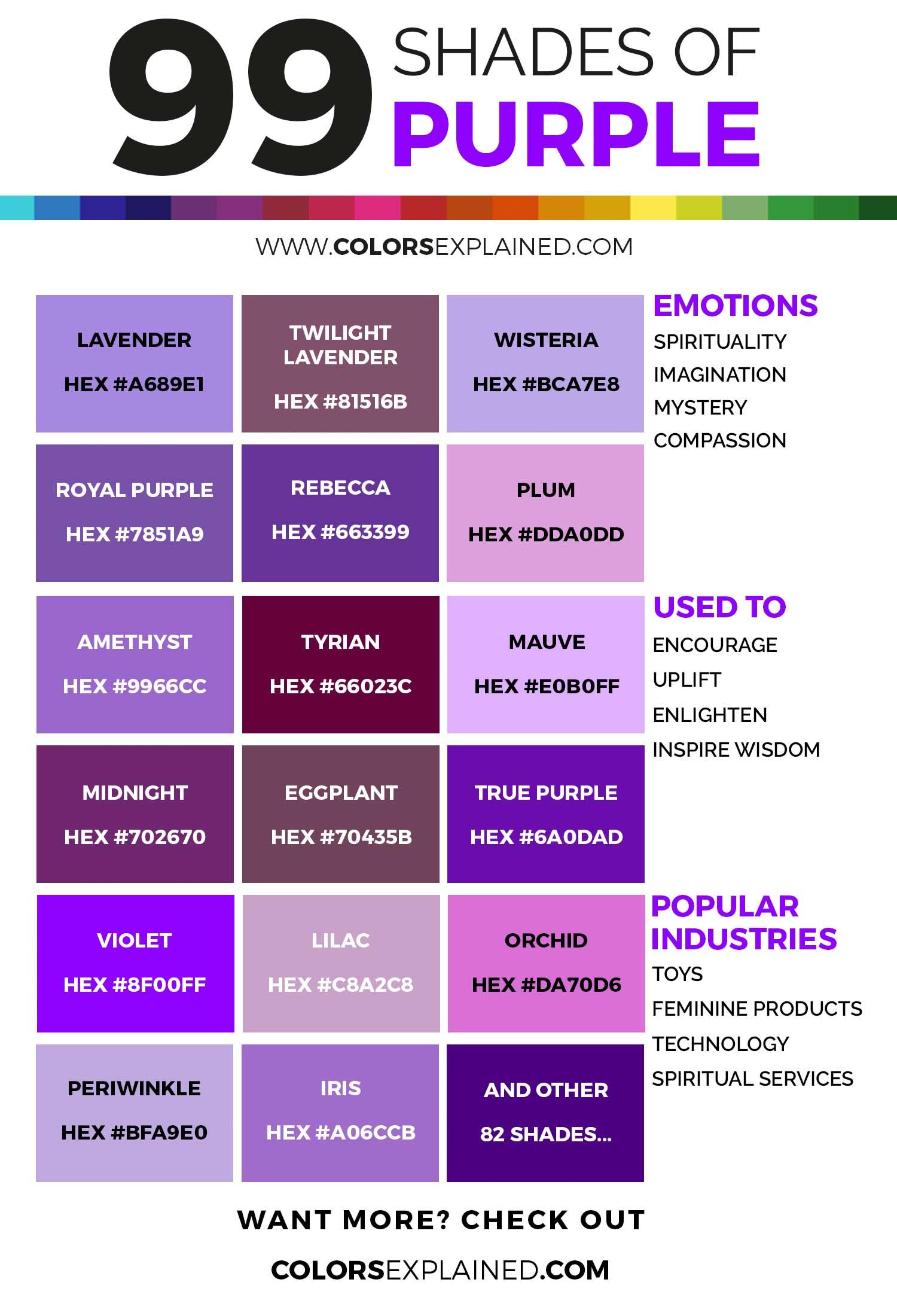 Оттенки фиолетовой инфографики Бруны Venturinelli