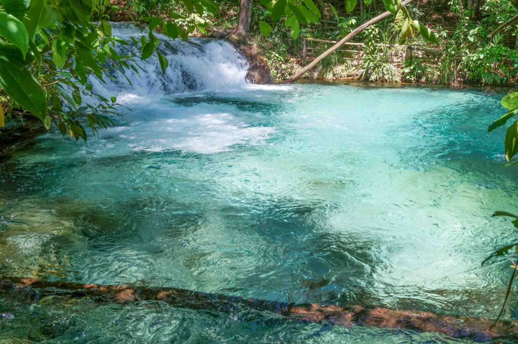 Blue and cyan water surrounded by green foliage