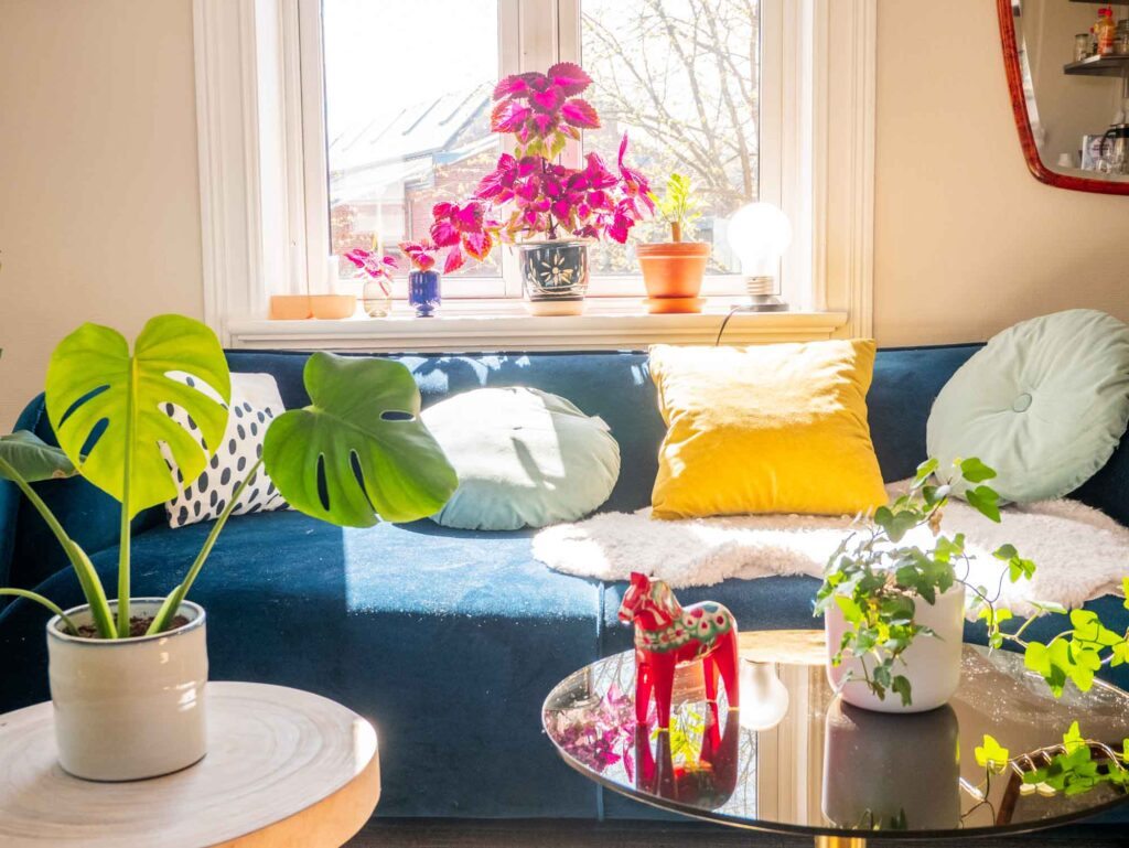 Blue, magenta, yellow, and green living room