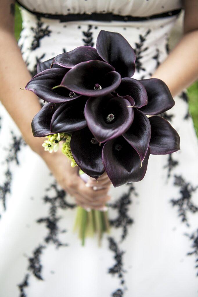 Bouquet of black odessa calla lily